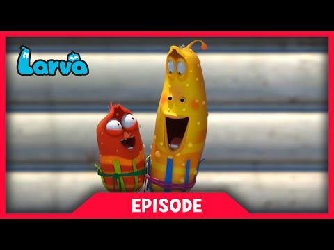 LARVA - SHADE | Cartoon Movie | Cartoons For Children | Larva Cartoon | LARVA Official