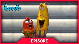 LARVA - SHADE | Cartoon Movie | Cartoons For Children | Larva Cartoon | LARVA Official