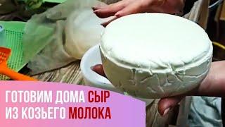 Козий сыр Простой рецепт Домашняя сыроварня
