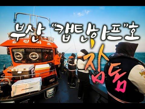 부산 참돔 캡틴하프호
