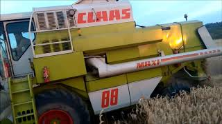 Żniwa 2019 Claas dominator 88 maxi & Case 956 XL/New holland 658