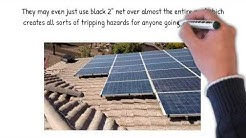 Arizona Solar Panel Pigeon Control Specialists