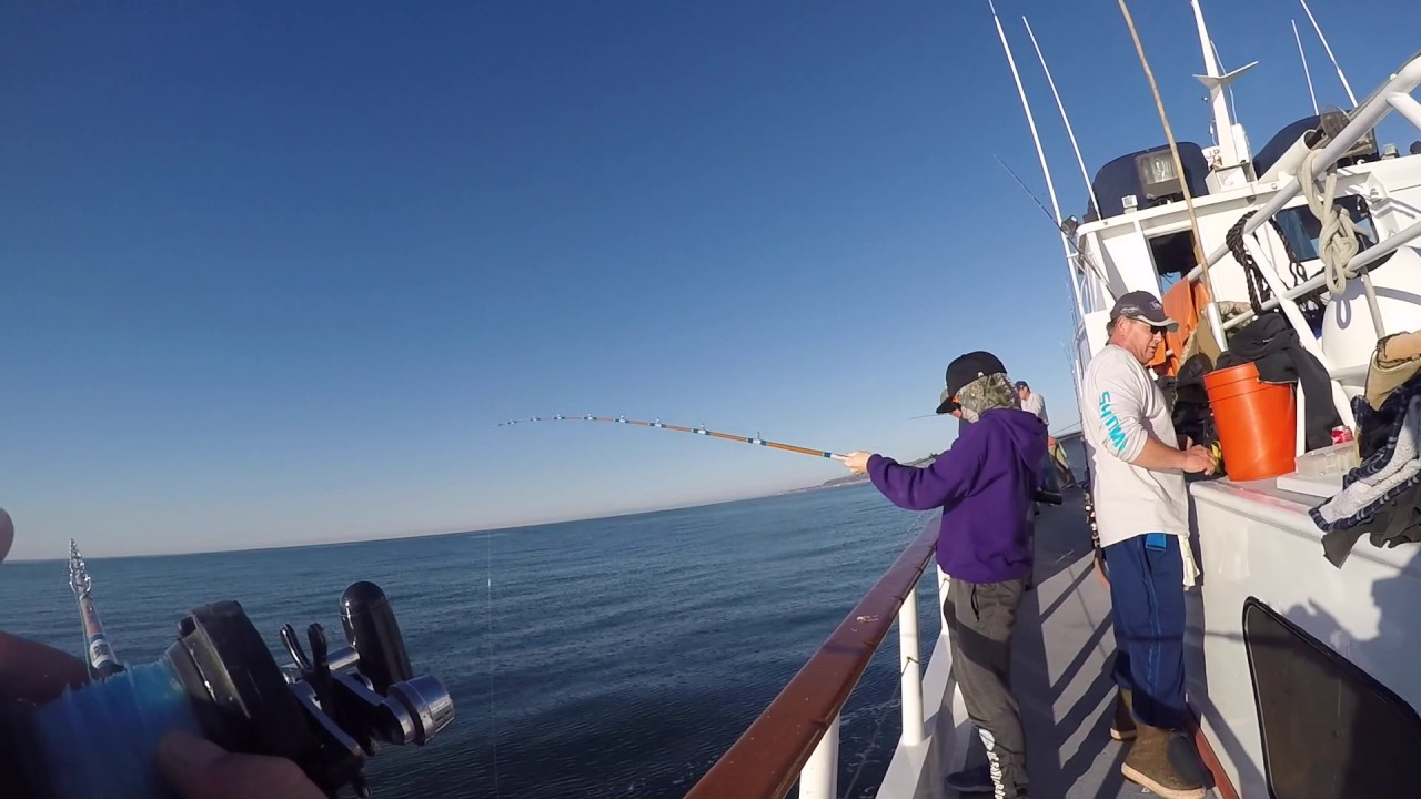 Deep sea fishing san diego california youtube for Fishing license san diego