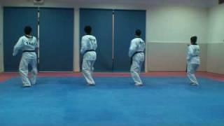 Basic Movement of Taekwondo  حركات التايكوندو الأساسية