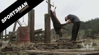 How to Butcher a Wild Pig