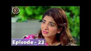 Aangan Episode 22 - Top Pakistani Drama