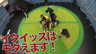 どうも、トラジャことTravis Japanです! 世界ゆるスポーツ協会が提唱す...
