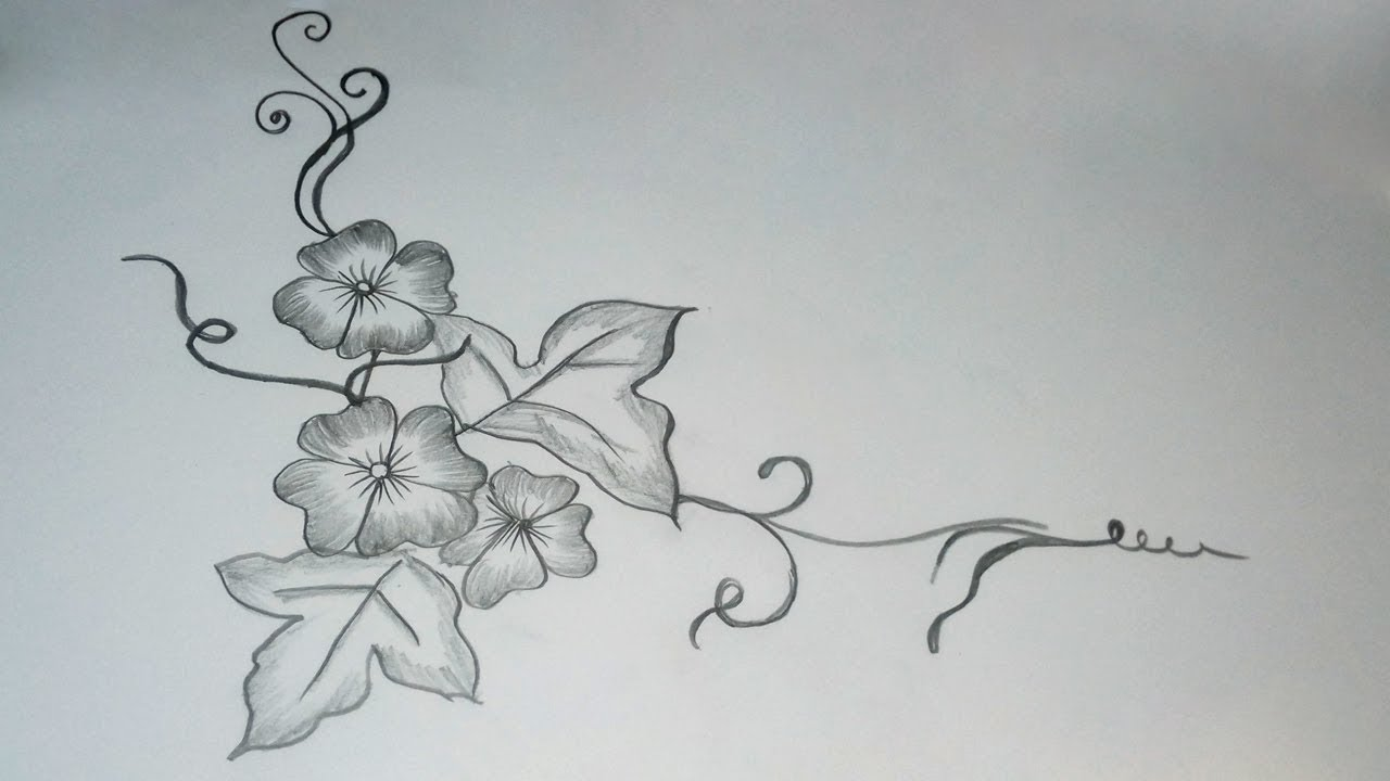 How To Draw Simple Flower Drawing Beautiful Flower Designs Drawing With Pencil For Beginners Youtube