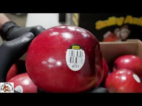 Packing and Shipping Washington New Crop Season 2020 Aztec Fuji Apples!