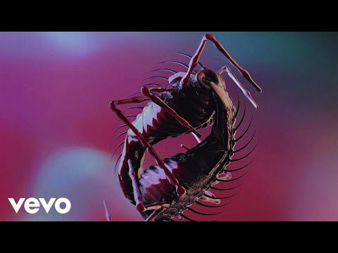 The Horrors - Machine (Official Video)
