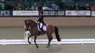Avanti & Elizabeth Ball - FEI Freestyle Test of Choice - Evening Of Musical Freestyles 2015