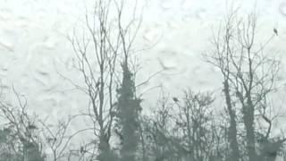 ALBUM: Thomas Koner - Novaya Zemlya [Touch]