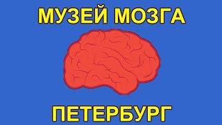 Смотреть видео Музей мозга. Петербург | The Museum of the brain. Petersburg онлайн