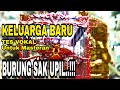 Tes Vokal Burung Masteran  Mp3 - Mp4 Download