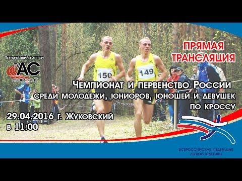 Чемпионат России по дистанционным конным пробегам 2016