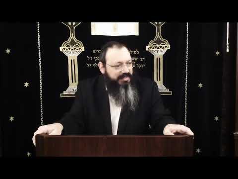 Chabad Odessa: раввин Довид Фельдман  гл  Трума 5780