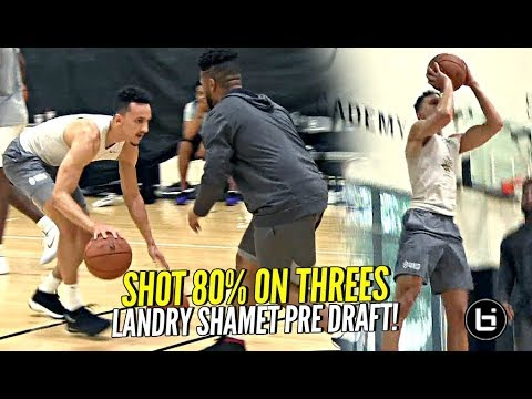 Landry Shamet Has UNLIMITED RANGE!! NBA Pre-Draft Workout! Biggest SLEEPER Of The Draft!?