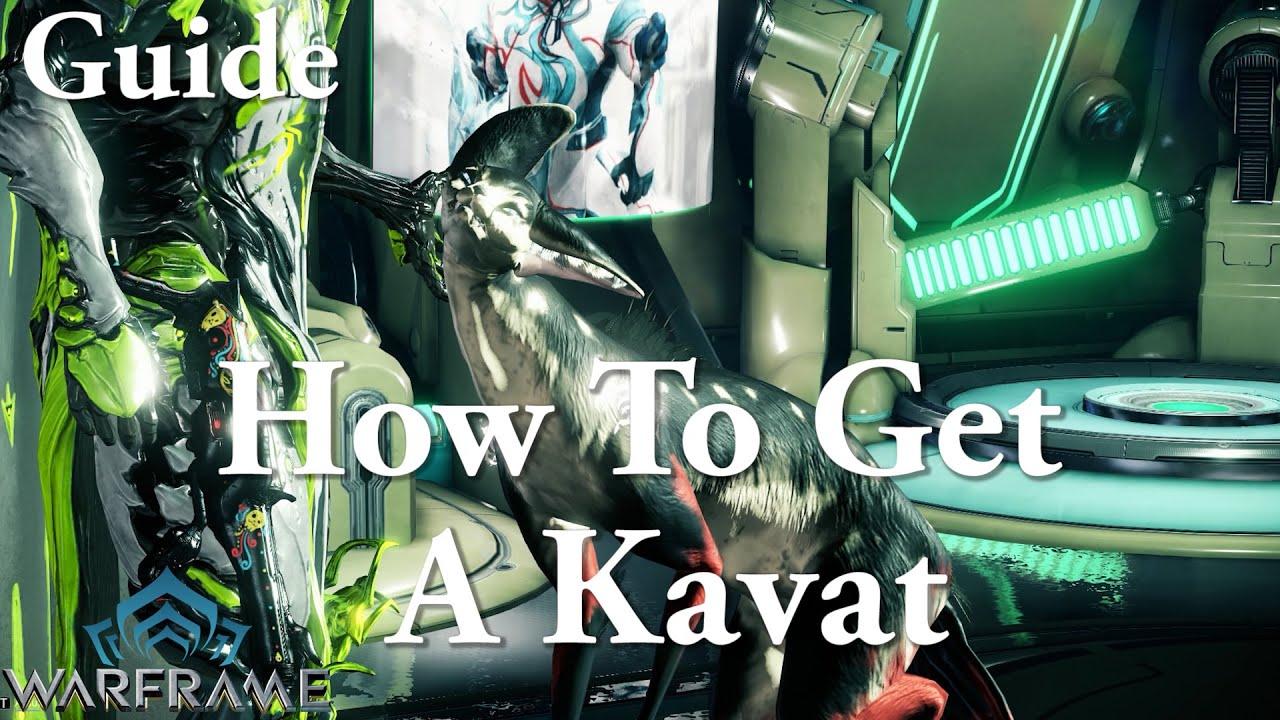 warframe how to get a kavat guide youtube. Black Bedroom Furniture Sets. Home Design Ideas
