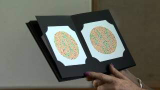 Demonstrating Colour Vision screening - Pass
