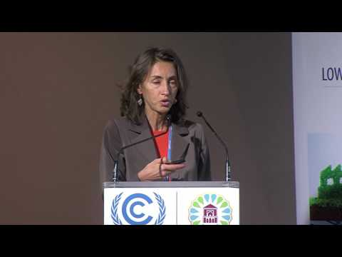 Sectoral Climate Mitigation: Industry Action and CCUS