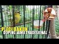 Jozz Doping Jamu Tradisional Jaga Stamina  Mp3 - Mp4 Download