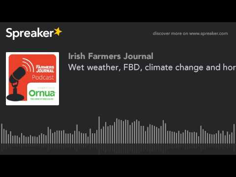 Wet weather, FBD, climate change and horse show shopping - from Ep. 19