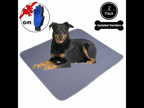 jdpet-washable-dogs-pee-pads+free-grooming-gloves