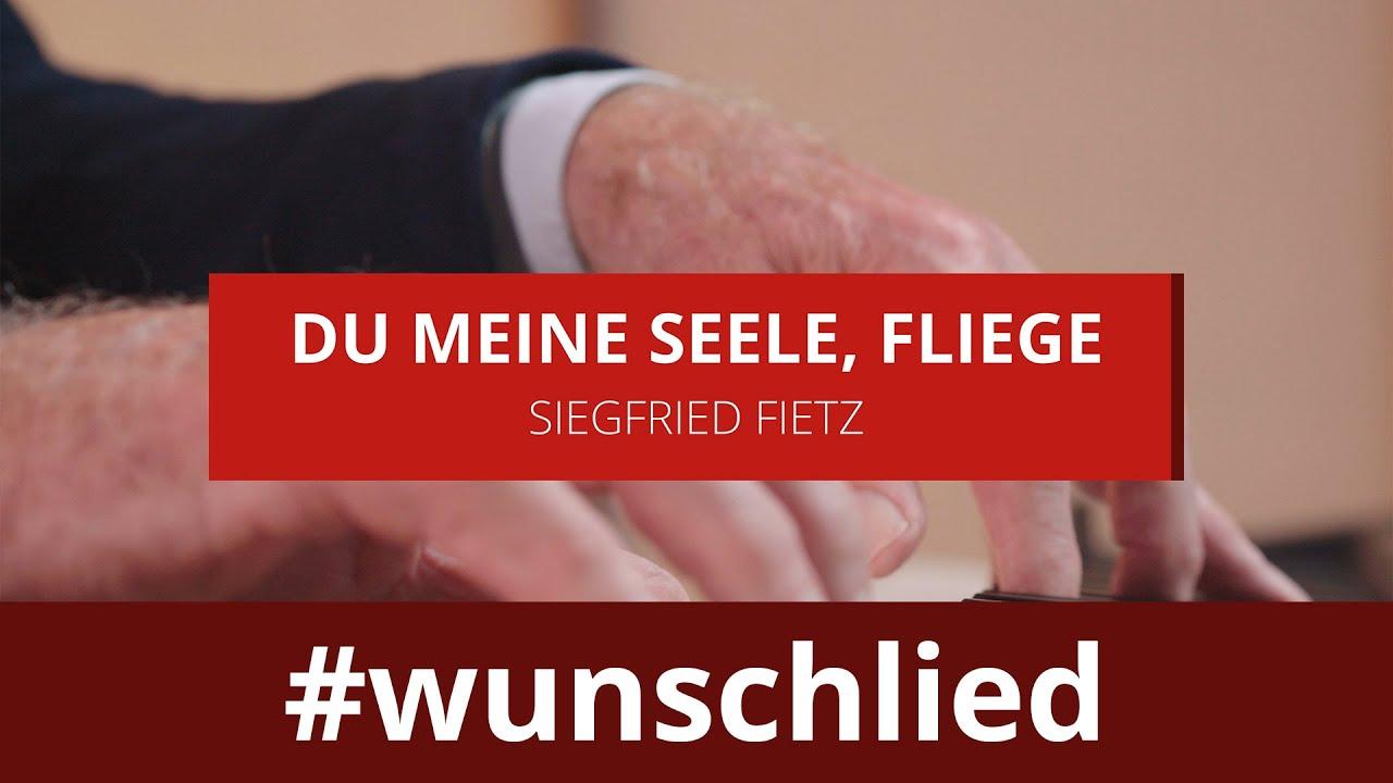 Siegfried Fietz singt 'Du meine Seele, fliege' #wunschlied