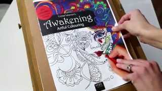 New Coloring Book -Look Inside Awakening: Artful Colouring book, hand drawn by Crystal Salamon