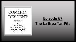 Episode 67 - The La Brea Tar Pits