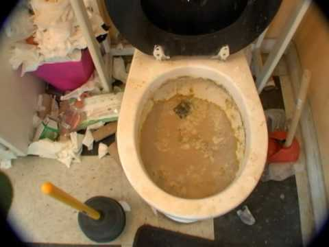 how to unclog a toilet the wrong way youtube. Black Bedroom Furniture Sets. Home Design Ideas