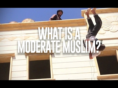 "What are ""Moderate Muslims""?"