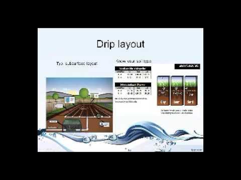 Water Conservation:  Landscape Design Strategies