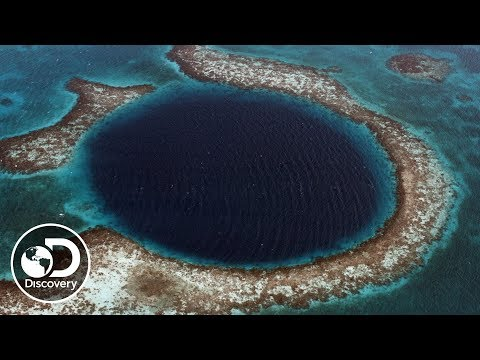 What is a Blue Hole? | Discovery LIVE: Into the Blue Hole