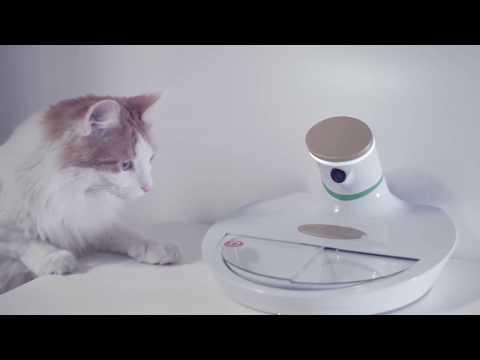 Mookie A.I. Powered Pet Bowl