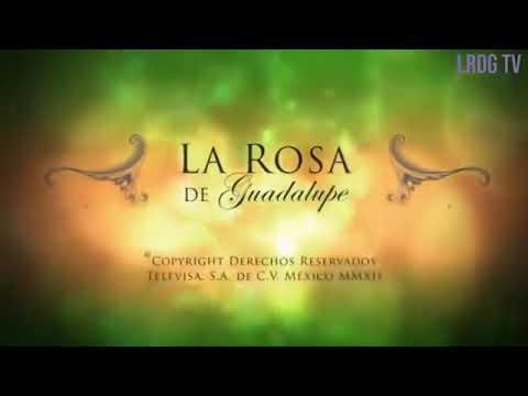 La Rosa De Guadalupe - Mi Sugar Daddy 1/2