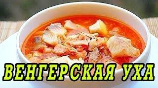 Венгерская уха из семги. Как приготовить уху из семги.