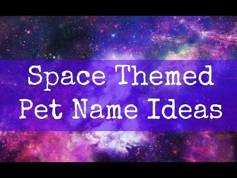 Space Themed Pet Name Ideas