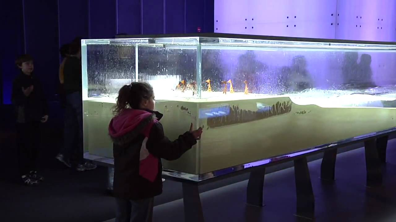 Science Storms - Tsunami Wave Tank