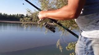 Интересная рыбалка на реке Каратал поймали Сазана
