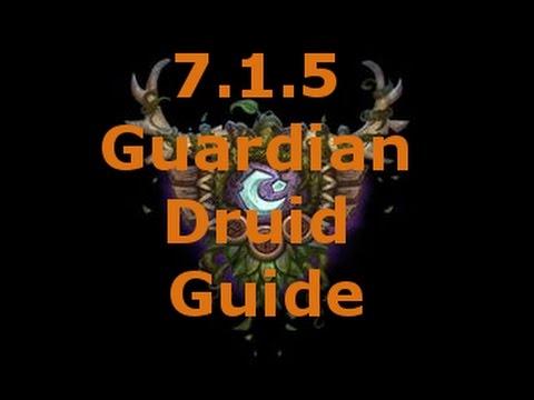 7.1.5 Guardian Druid Guide
