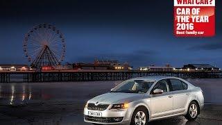 Skoda Octavia - 2016 What Car? Family Car of the Year | Sponsored