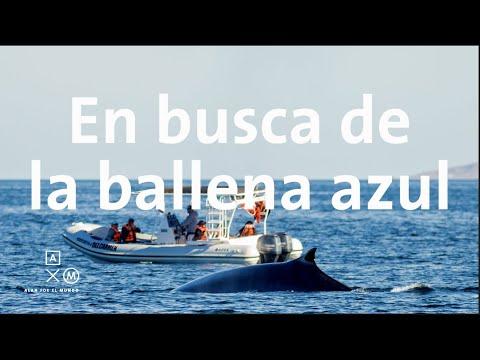 Loreto   Baja trip #11 Alan por el mundo