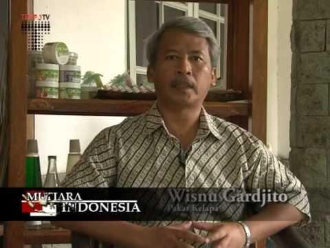 The Green Coco Island® - Wawancara Dengan Pak. Wisnu Gardjito di Tempo TV