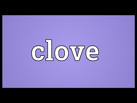 Clove Meaning