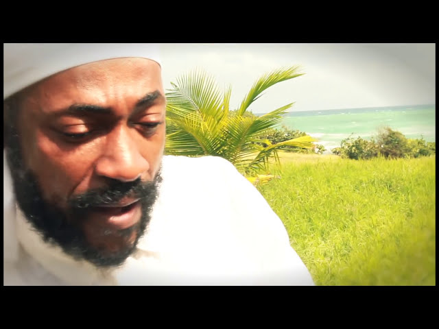 Work For What You Want - Lutan Fyah (Official Video)