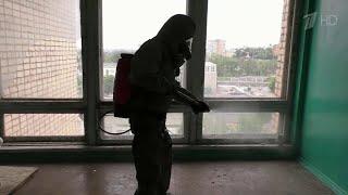 В России стабильно высоким остается прирост выявленных случаев коронавируса