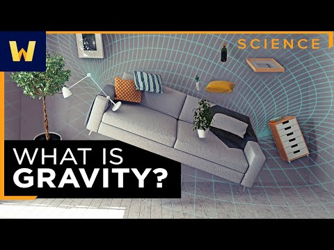 General Relativity and Gravity | What Einstein Discovered