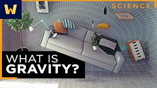 General Relativity and Gravity   What Einstein Discovered
