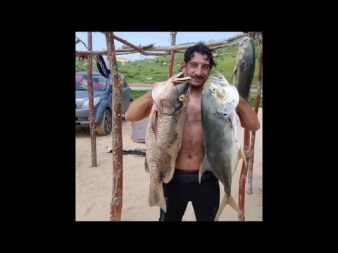 Spearfishing South Angola finding new spots.
